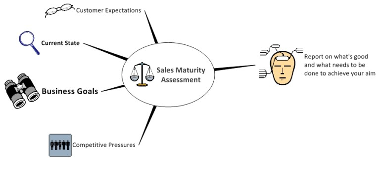 Sales Maturity Assessment